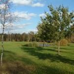 Gartengestaltung und Golfplatzpflege